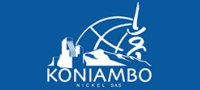 Koniambo uses PointFire for Multilingual Collaboration
